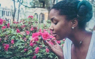 3 Ways Practicing Gratitude Builds a Successful Life